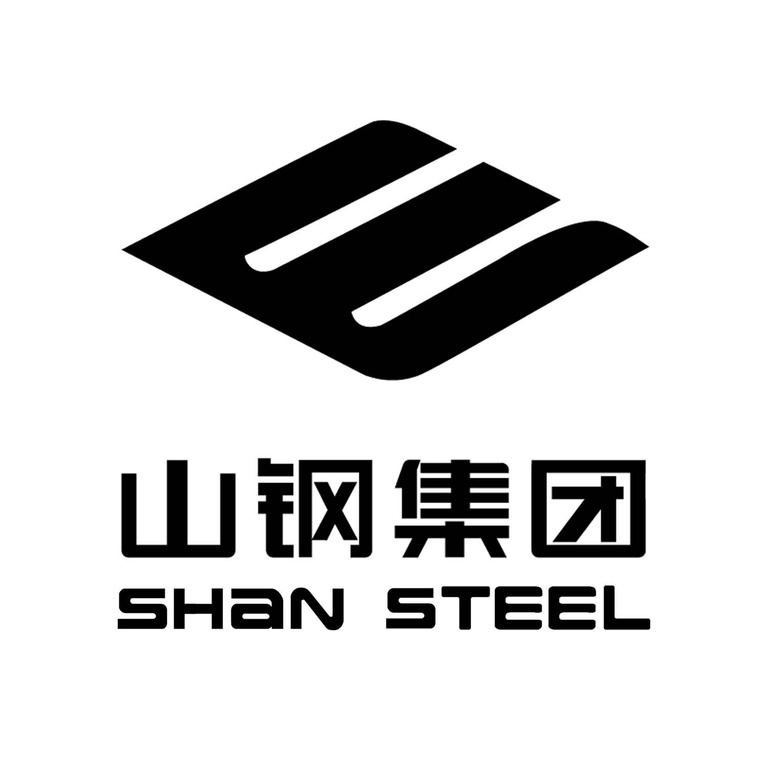 Shandong Iron and Steel Logo